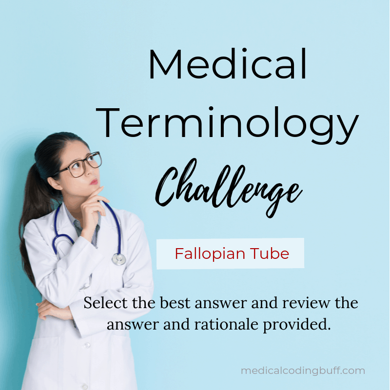 Condition of the Fallopian Tube: Medical Terminology Challenge