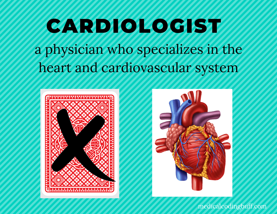 a cardiologist specializes in the heart and cardiovascular system, not in playing cards