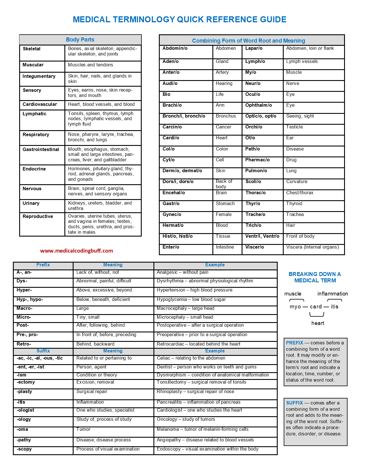 Medical Terminology Quick Reference Guide
