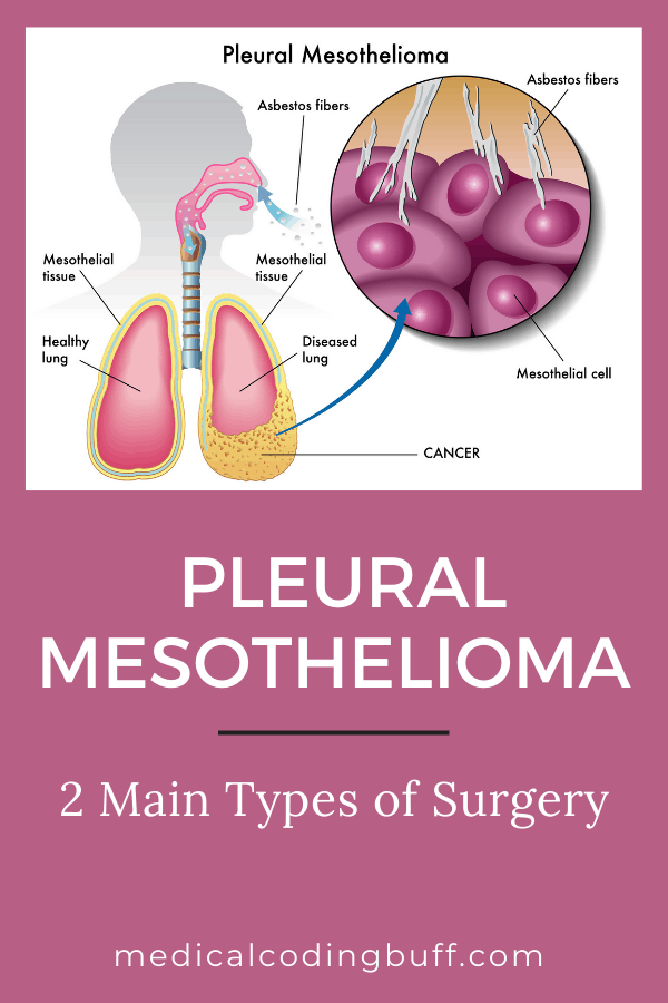 a healthy lung vs. a diseased lung in pleural mesothelioma