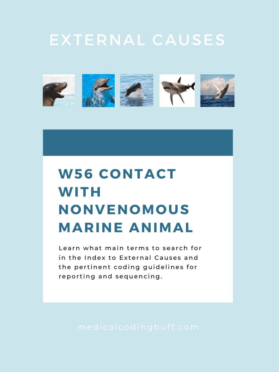 How to look up external cause codes for nonvenomous marine animals in ICD-10-CM using the main terms